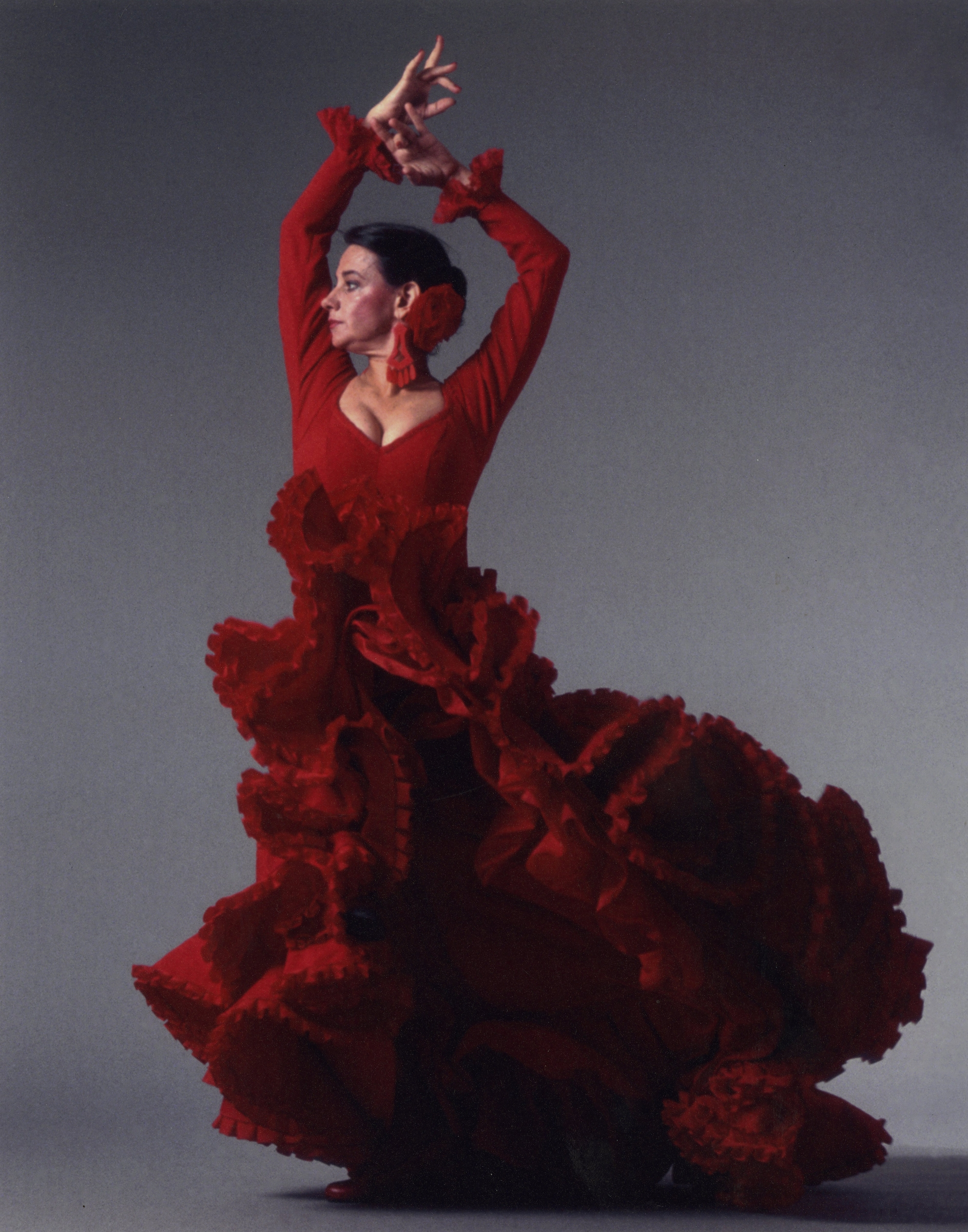 Flamenco-Photo-by-Vict...
